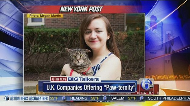 paw-ternity-leave